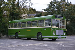 Eastern National 1516 FWC430H (Will Swain) Tags: newport quay during isle wight buses beer walks weekend 2018 14th october bus transport travel uk britain vehicle vehicles county country england english south coast island preserved heritage eastern national 1516 fwc430h