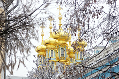 Domes of the Catherine Palace. (fedoseenko) Tags: санктпетербург россия красота colour природа beauty blissful loveliness beautiful saintpetersburg art shine light russia day park peace blue white голубой небо лазурный color sky pretty пейзаж landscape clouds view mood serene gold colours picture tree nature alley history trees tsar outdoors old wood cupola building architecture domes town winter snow cloud снег облака архитектура дворец здание freeze frost frosty orthodox religion holy 550d