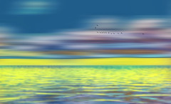 Solitude 640 (Wim Koopman) Tags: glowing flowing horizon water lake pond sea reflection bright color blur birds geese flying flight digital drawing painting art
