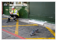 Lunch time (sdc_foto) Tags: sdcfoto street streetphotography color pentax k1 london lunch pigeons lines worker eating people green yellow red break
