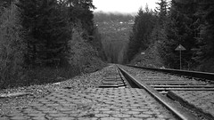 Brandywine Trainline (Tom_Jones7) Tags: travel travelling life city adventure travelphotography travelbug passion travelmore goexplore newplaces myview explorer photo photograph photographer lifestyle canon road trip roadtrip bc british columbia canada 2017 2k17 brandy wine brandywine train line trainline tracks sign seatosky highway99 sea sky black white blackwhite bw bnw blackwhitephoto monochrome depth dof depthoffield shallow mountains trees excellentbnw noir blackwhitelife noirvision contrast