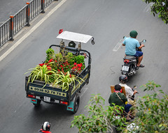 Vietnamese delivery tricycle on street (phuong.sg@gmail.com) Tags: asia asian basket beautiful beauty bicycle bike biking city color colorful crowd delivery female food hanoi indochina life lifestyle moving old people person poor retro riding road saigon scene sidewalk southern speed street tradition traditional traffic transport transportation tricycle unhealthy vendor vietnam vietnamese vintage