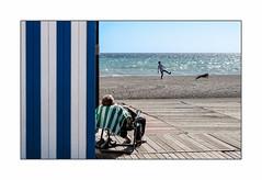 Grosse fatigue...... (francis_bellin) Tags: bleu olympus plage espagne torredelmar sieste sable soleil sport chien couleur 2019 andalousie fevrier
