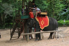 Angkor_Siem Reap_2014_20