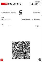 "Busfahrausweis Schweiz • <a style=""font-size:0.8em;"" href=""http://www.flickr.com/photos/79906204@N00/47308945431/"" target=""_blank"">View on Flickr</a>"