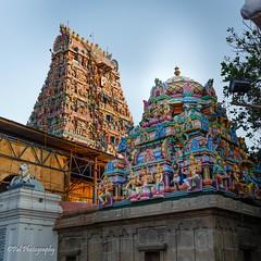 Inside View of Sri Kapaleeswarar Temple,Mylapore (ppaulvadivu) Tags: paulvadivu hindu temple chennai india mylapore kapali