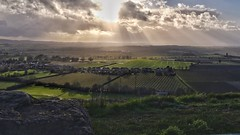 Stormy Weather - South Somerset. (margaretgeatches) Tags: hills stormy clouds light golden village agriculture crops brown green wetfields floods southsomerset winter