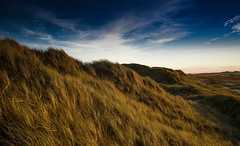 Dünen im Abendlicht  - Dunes in the evening light (huetteberg) Tags: world europa deutschland schleswigholstein insel amrum abendlicht dünen wasser wind gras sand himmel strand nordfriesland nordsee outdoor landschaft natur huetteberg