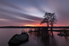 4 minutes at dusk (jarnasen) Tags: fuji xt20 samyang12mmf2 12mm wideangle tripod longexposure nd3200 benro benrofilters water smooth sweden sverige scandinavia sky sun sunset geo geotag gallery järnåsen jarnasen copyright clouds nature outdoor colourful composition mood nordiclandscape landscape landskap sunlight shadows shore trees rocks öresjö borås reed reflections pov
