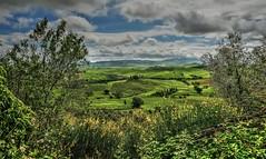 Val d,Orcia (giannipiras555) Tags: toscana verde natura paesaggio panorama landscape alberi cielo nuvole fiori valle