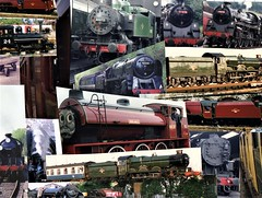 A collage of old British Steam Trains (rossendale2016) Tags: machines service out disused lones charities charity helping own giving time free retired workers engineers professional amateur maintained maintenance enthusiasts powered hobby refurbished antique veteran vintage examples multiple many speed efficient fast transport horse iron steel track railway box coal boiler fire engine water collection colourful colorful trains steam english british old collage