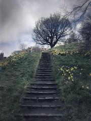 Stairs, Edinburgh (lydiacassatt) Tags: hipstamatic