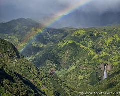 Jurassic Falls _DSF2725-Edit (Laurie2123) Tags: hawaii honeymoon laurieabbotthartphotography laurieturnerphotography laurietakespics odc odc2019 ourdailychallenge