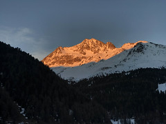 Tramonto su Cima Vertana (3.545 m) (giorgiorodano46) Tags: marzo2019 march 2019 giorgiorodano solda sulden sudtirolo altoadige italy inverno winter hiver alpi alpes alpen alps puntavertana vertana tramonto sunset