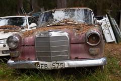 W110 (mariburg) Tags: rotten marode alt old rostig rustycars canonef2470mmf28liiusm mercedes
