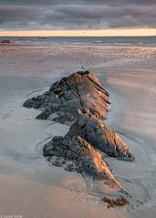 Sunlit rocks (Donard850) Tags: ardspeninsula ballywalter countydown irishsea northernireland beach clouds darksky horizon rocks sea sunlight sunrise