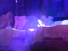 Florida Day 4 - 274 Disneys Hollywood Studios Fantasmic (TravelShorts) Tags: wdw walt disney world disneys hollywood studios florida orlando fantasmic frozen vine star wars tower terror