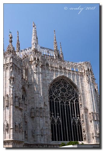 Gran ventanal de la Certosa de Pavía