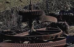 Toupie et engrenages (DOMVILL) Tags: industriel norddefrance abandonné domvill engrenage rouille toupie wwwflickrcompeoplevildom