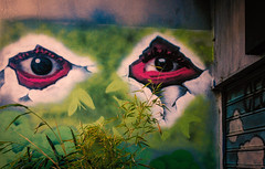 Eyes (Мaistora) Tags: graffiti streetart street urban art painting mural poster eyes fiction fantasy symbolic symbol metaphor purple pink green wall design shop retail fashion milano milan italy sony ilce alpha a6000 sel24f18 lightroom