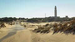 Spain - Cadiz - Barbate - Trafalgar lighthouse (Marcial Bernabeu) Tags: marcial bernabeu bernabéu europe europa south sur spain españa andalusia andalucia andalucía cadiz cádiz barbate trafalgar beach playa faro lighthouse sand arena