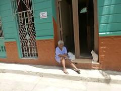 lady and her cat (Jackal1) Tags: people cat street city havana cuba lady