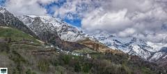Aydius (64) (https://pays-basque.coline-buch.fr/) Tags: 2019 64 aquitaine avril aydus béarn colinebuch france daspe foret montagne nature paysage pyrénées pyrénéesatlantiques vallée
