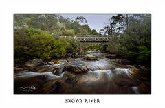 Bridge over Snowy River, Kosciuszko (sugarbellaleah) Tags: snowyriver bridge footbridge wilderness cold freezing kosciuszkonationalpark nature water flowing rocks crossing chilly snowmelt bushland flora motion longexposure fog mist rain weather climate thredbo snowymountains australia