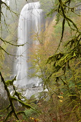 Silver Falls, Golden and Silver Falls State Natural Area, Oregon (Damon Tighe) Tags: beauty exposure falls long longexposure natural nature or oregon pacificnorthwest pnw silver silverfalls vertical waterfall