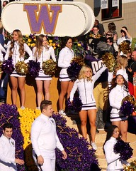 University of  Washington ~ Huskies (Prayitno / Thank you for (12 millions +) view) Tags: uw university washington cheer leaders young pretty hot sexy beautiful blond blonde brunette black hair college girl mini short skirt squad huskies purple gameday rose bowl parade 2019 pasadena ca california outdoor fun activity