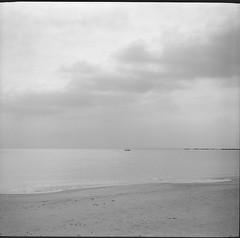 0099 (nori 4) Tags: newfujica6 fp4 d76 13 sea kanagawa