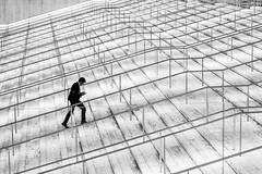 Roma - 2018 (Enzo D.) Tags: bianco e nero black white blanco y negro eur lines nuvola roma rome stairs steps wwwenzodemartinocom