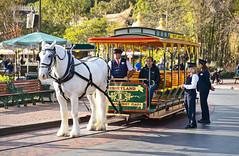 Street Railway One (thinduck42) Tags: disneyland horse animal rail mainstreet a7iii sony tamron tamron2875mm amusementpark transportation streetcar horsedrawn trolly ngc