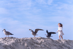 the Joy of chasing birds (Keoni Cabral) Tags: us beach ocean sand little beachbirds birds bird girl