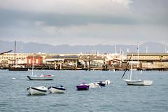 San Francisco Maritime National Historical Park #1 (satoshikom) Tags: canoneos6dmarkii canonef70200mmf4lisusm sanfranciscomaritimenationalhistoricalpark sanfrancisco downtown weekend californiacoast