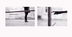 """Gocce"" (Serie 1 di 4) (Maria Evgenidu) Tags: minolta minoltasrt303 agfafilms agfaapx400 analogue analog analogico analogica analogphotography analogpassion film fotografiaanalogica filmisnotdead finchècèpellicolacèsperanza filmisawasteoftime thefilmexperience theanalogproject thefilmcommunity truegrain bw bn biancoenero beanalogic blackandwhite macula pesaro staybrokeshootfilm iscanbymyself iamastoryteller"
