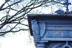 123 - Paris - Février 2019 - des chouettes dans le cimetière de Montmartre (paspog) Tags: paris france cemetery cimetière friedhof montmartre cimetièredemontmartre février februar february 2019