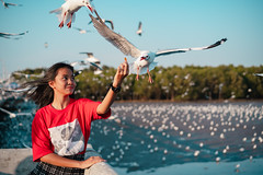 Young girl feeding seagulls (Patrick Foto ;)) Tags: teenage animal asian background bang beach beautiful beauty bird blue crackling cruise eat feather feed feeding female flying food freedom fun girl gull hand happiness happy lifestyle nature ocean outdoor people portrait pu scene sea seagull seagulls sky summer sunset thailand tourism travel vacation water wild wildlife wing woman young samutprakan th