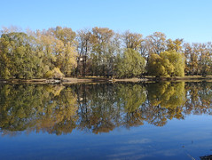 Carburn Park Reflections (pamfromcalgary) Tags: scenery carburnpark reflections