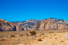 DSC_2414 (Alex Cernichiari) Tags: redrocks ice box canyon iceboxcanyon nikon nikonz6 lasvegas las vegas hiking desert mountains lightroom