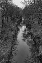 Reflections on the Creek (Kool Cats Photography over 11 Million Views) Tags: creek river water reflections trees blackandwhite bw oklahoma outdoor photography canon canoneos6d canon24105f4lisusmlens winter season