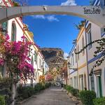 Bougainvillea, Puerto de Mogan, Gran Canaria, Spain - 2202 thumbnail