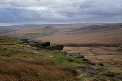 Windswept Buckstones (HonleyA) Tags: ricohgr2 ricoh landscape buckstones yorkshire