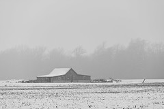 Barn in Fog (ramseybuckeye) Tags: barn fog snow winter van wert county ohio converse pentax life art farm field trees mist gray black white