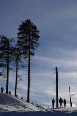 walk in nice winter weather (mgheiss) Tags: walker spaziergänger winter schnee snow people schwarzwald blackforest northernblackforest pentaxkp pentaxda18135mm februar february 2019 spaziergang