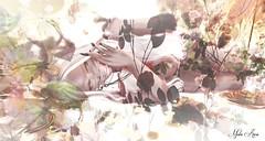 "Pureté (Mistic Aura ""Nevrose"") Tags: bentopose bento avatar 3d mesh flower pure elf whiteskin photoshop light lighting beautiful"