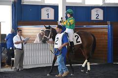 "2017-09-10 (9) r4 Jenn Miller on #2 I Just Wanna Win (JLeeFleenor) Tags: jockey جُوكِي ""赛马骑师"" jinete ""競馬騎手"" dżokej jocheu คนขี่ม้าแข่ง jóquei žokej kilparatsastaja rennreiter fantino ""경마 기수"" жокей jokey người horses thoroughbreds equine equestrian cheval cavalo cavallo cavall caballo pferd paard perd hevonen hest hestur cal kon konj beygir capall ceffyl cuddy yarraman faras alogo soos kuda uma pfeerd koin حصان кон 马 häst άλογο סוס घोड़ा 馬 koń лошадь paddock outside outdoors photos photography md marylandracing maryland marylandhorseracing laurelpark laurelracecourse"