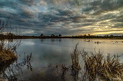 Coucher de soleil sur la Loire (v.hajek) Tags: loiretcher longexposure loirevalley 41 loire borddeloire coucherdesoleil landscape coursurloire paysage sunset poselongue france fr