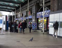 Finsbury Park Station (London Less Travelled) Tags: uk unitedkingdom britain england london northlondon harringay city street urban suburb suburbs suburban suburbia station people pigeon finsburypark entrance tube underground