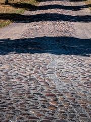 20180909-051 (sulamith.sallmann) Tags: weg brandenburg deutschland europa kopfsteinpflaster landstrase märkischoderland müncheberg naturmaterial stein strase sulamithsallmann